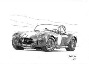 Daniel SL_Shelby Cobra 2013