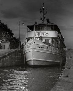 Dejan_Juno